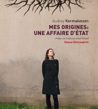 J'ai lu Mes origines : Une affaire d'état de Audrey Kermalvezen