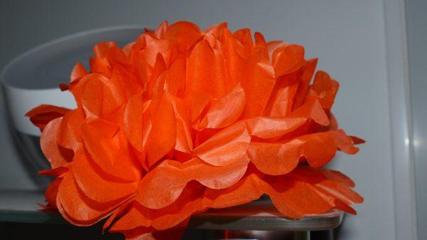 fleur soie orange