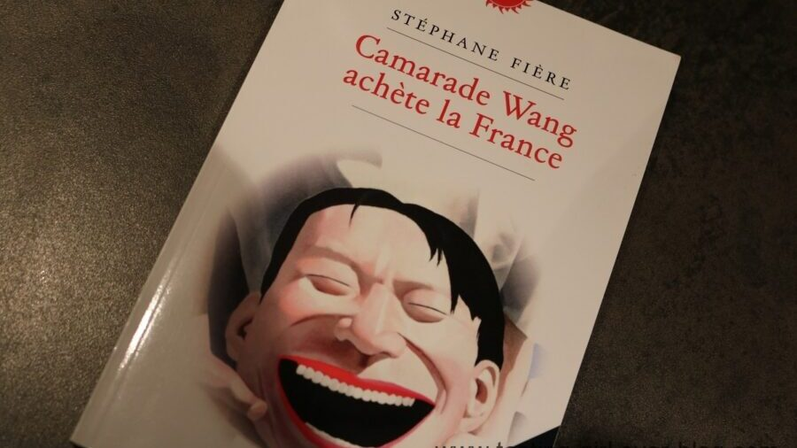 Camarade Wang achète la France de Stéphane Fière