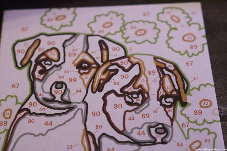 numero d art ravensburger lignes colorees chiots avis test