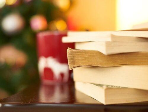 mes meilleurs romans - livres - lectures - 2017