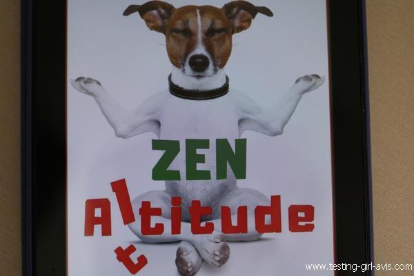 Zen Altitude de Sonia Dagotor - Résumé
