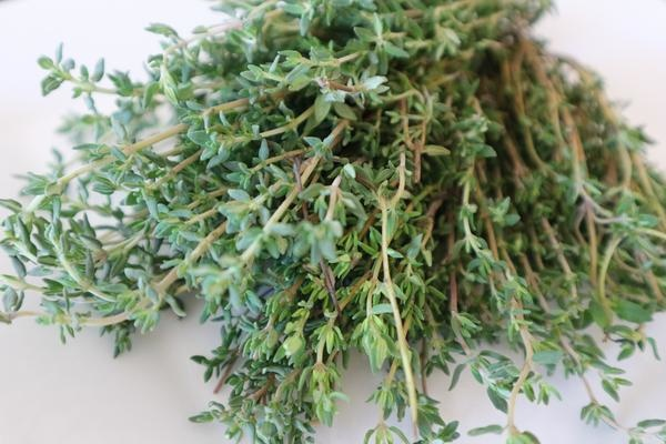 5astuces pour soigner un rhume naturellement - phytothérapie tisanes thym