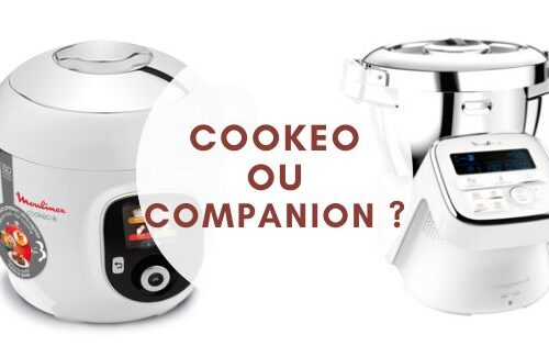 cookeo ou companion moulinex
