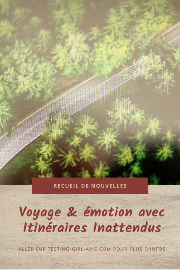 voyage emotion itinéraires inattendus marie havard Pin
