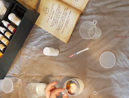 Fabulus Potium: Notre avis sur le jeu des sorciers