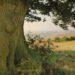 L'arbre de Johanne: un roman de Karine Carville